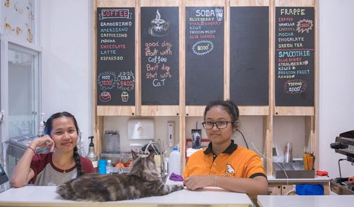 10-11-Cat\'s-Cafe-(2)