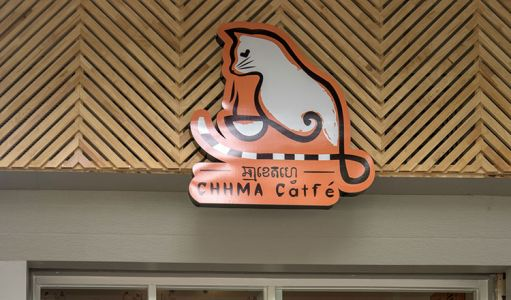10-11-Cat\'s-Cafe-(8)